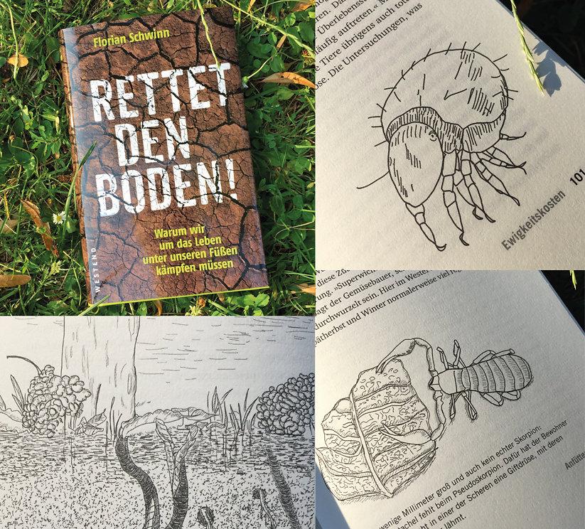 Innen-Illustrationen für das Buch »Rettet den Boden«